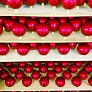 34 Zoomadanke Ruby Red一般発売開始!01
