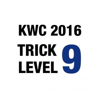 trick-level-9